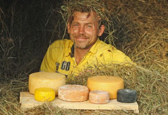 Продажа сыра от производителя