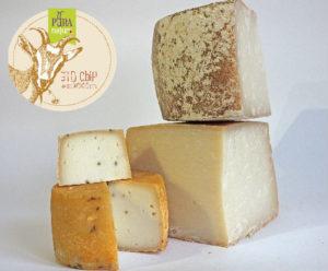 Сыр оптом