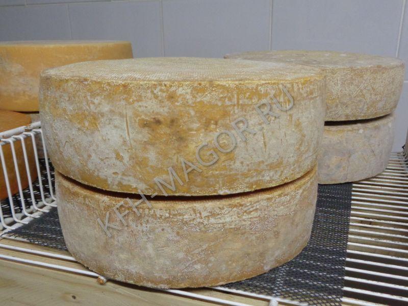 Как хранить сыр от фермера