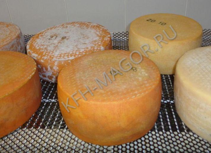 производители сыров