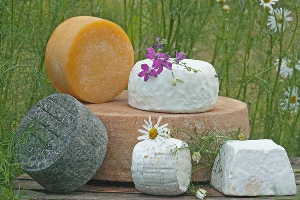 Купить сыр в Москве