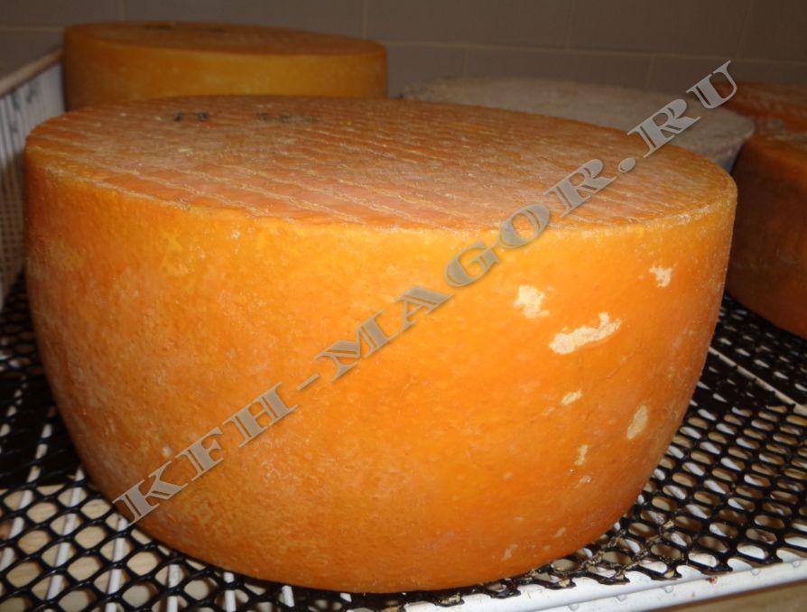 Фермерский сыр выдержанный