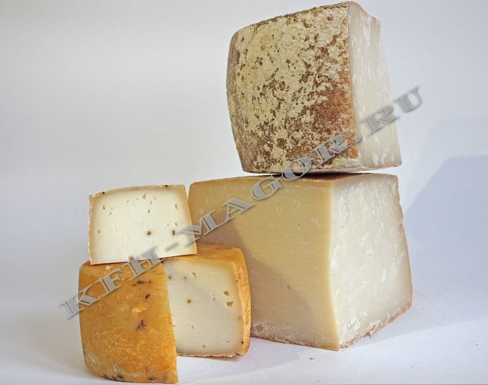Сыр купить в Москве