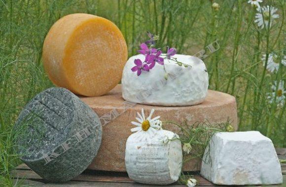 Сыр от производителя