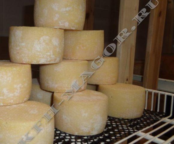 Крафтовая сыроварня